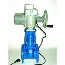 Задвижка МЗВШ безколодезная чугун фл Dn-300 (Pn-1,0 МПа) T 75ºС Водоприбор